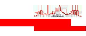 Logo Feuerwehr Hochheim